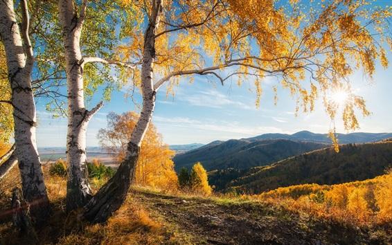 Papéis de Parede Outono, montanhas, árvores, sol, paisagem natural bonita
