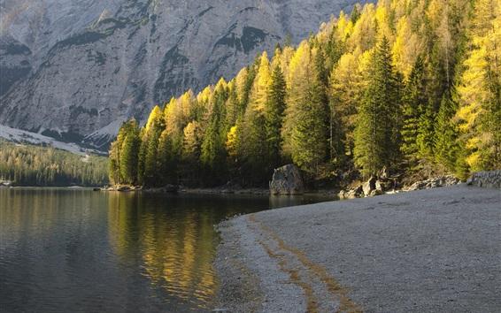 Wallpaper Autumn, trees, river, mountains, rocks