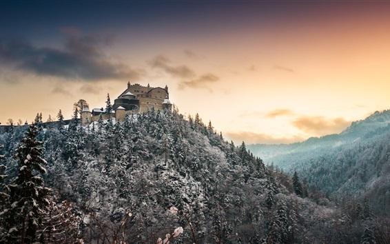Wallpaper Castle, trees, snow, mountain, winter, dusk