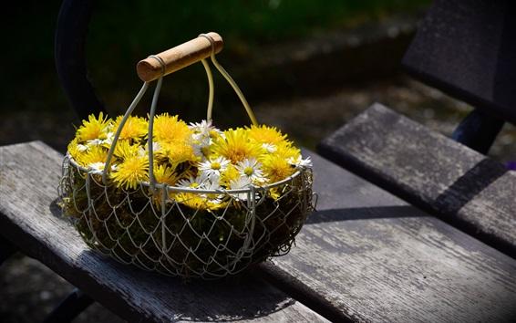 Papéis de Parede Margarida, cesta de flores
