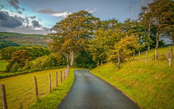 Обои Поля, трава, забор, дорога, деревья