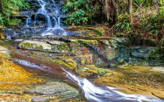 Fond d'écran Forêt, ruisseau, cascade, rochers, mousse