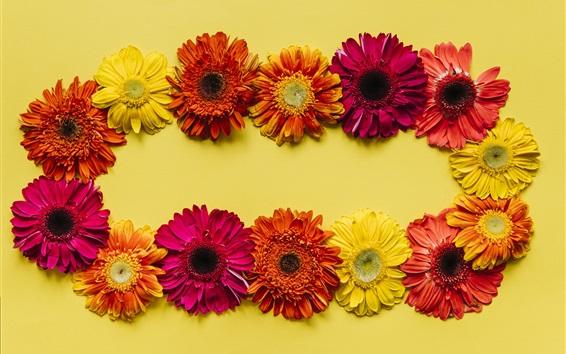 Papéis de Parede Gerbera flores fundo, amarelo, vermelho, laranja
