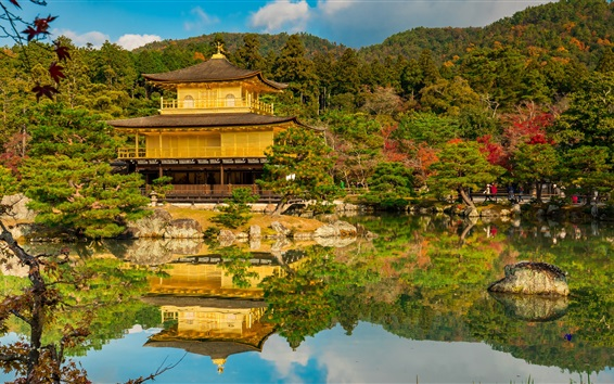 壁紙 ゴールデンパビリオン、寺院、庭、京都、日本
