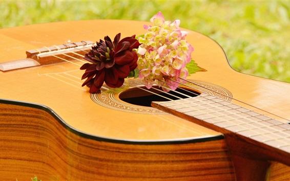 Wallpaper Guitar, flowers