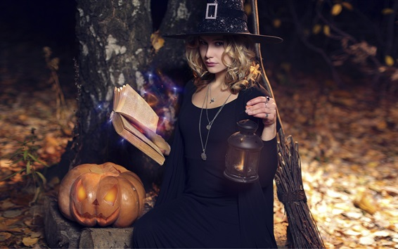 Fond d'écran Halloween, sorcière, fille, balai, citrouille, lanterne