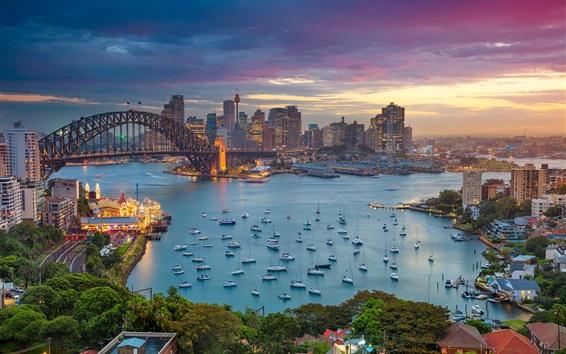Wallpaper Harbour Bridge, Australia, city, evening, boats, yachts, bay