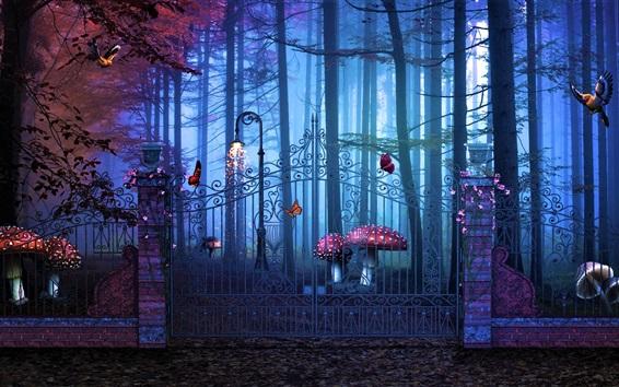 Fond d'écran Porte magique, forêt, champignons, design créatif