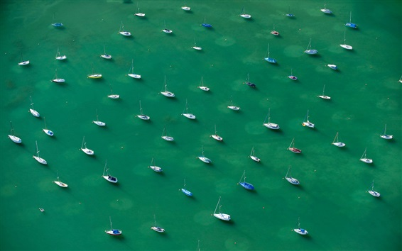 Wallpaper Many yachts, Lake Constance, Alps, top view