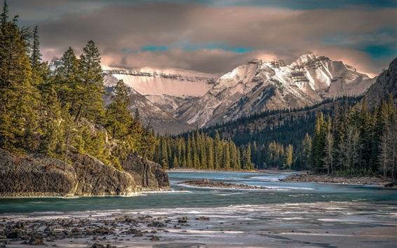 Wallpaper Mountains, trees, river, nature landscape
