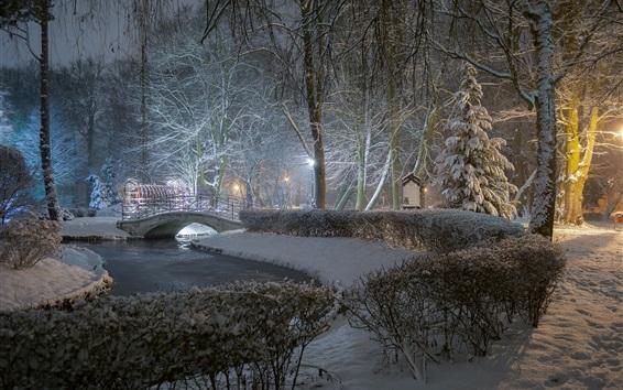 Wallpaper Park, night, trees, river, bridge, lamp, winter