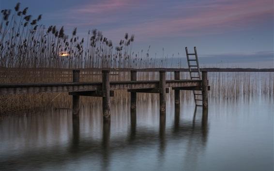 Wallpaper Pier, reeds, pond, dusk