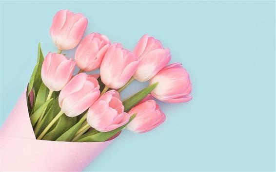 Fond d'écran Tulipes roses, bouquet, fond bleu