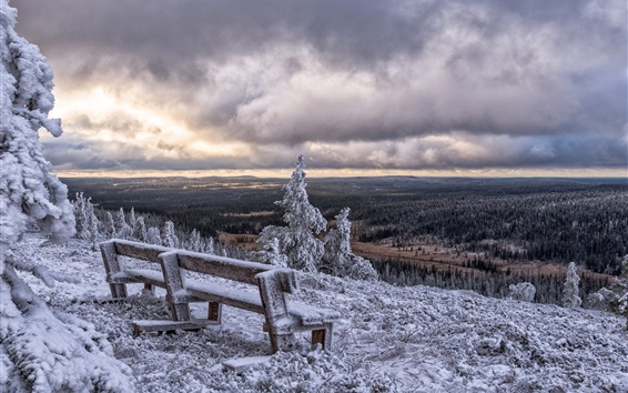 Wallpaper Posio, Finland, winter, snow, bench, trees, clouds
