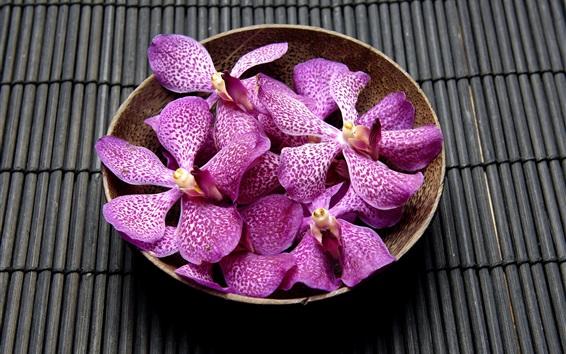 Fond d'écran Purple orchidée, bol