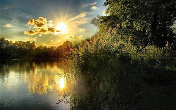Wallpaper River, bushes, clouds, sunset