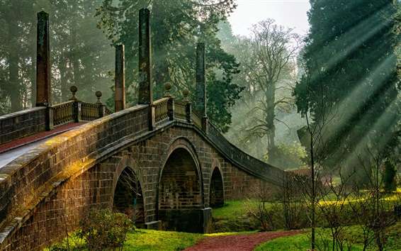 Wallpaper Scotland, Dumfries House, bridge, trees, sun rays