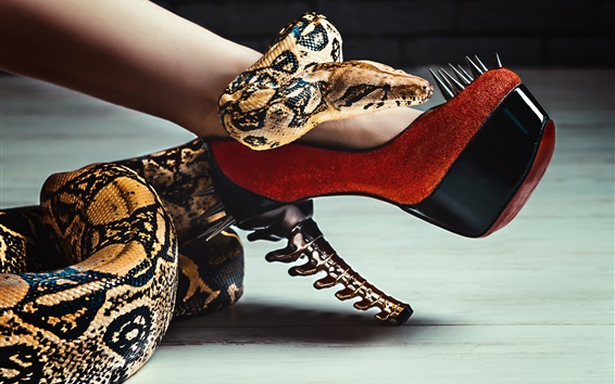 Wallpaper Snake and heels, leg, spikes