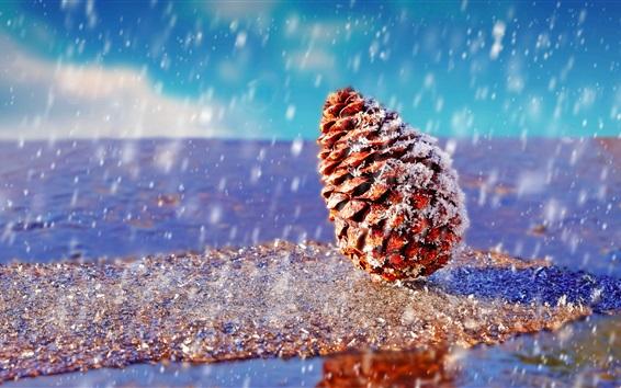 Fond d'écran Épicéa, neigeux
