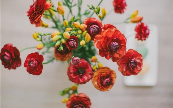 Papéis de Parede Natureza morta, vista superior de flores