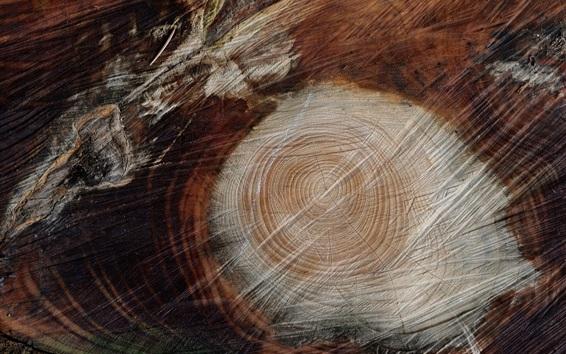 Wallpaper Stump, rings