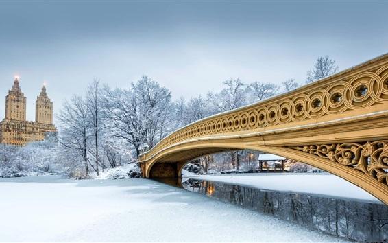 배경 화면 미국, 뉴욕, 센트럴 파크, 겨울, 눈, 다리
