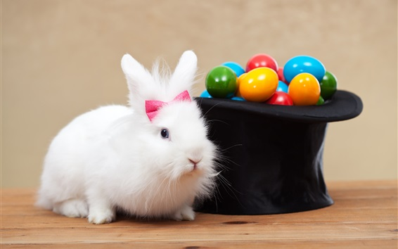 Wallpaper White rabbit and colorful eggs, Easter