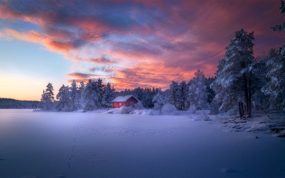 Wallpaper Winter, forest, house, snow, clouds, dusk