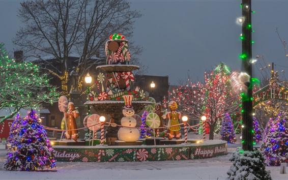 Fond d'écran Hiver, vacances, lumières, neige, arbres, fontaine, nuit