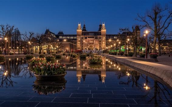 壁紙 アムステルダム、国立博物館、オランダ、夜、ライト、チューリップ