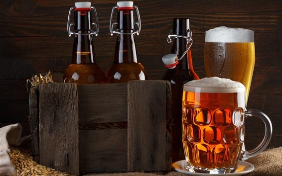 Papéis de Parede Cerveja, bebidas, espuma, garrafas, copos de vidro