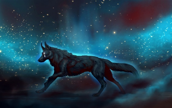 Wallpaper Black wolf walk at night, starry, art picture