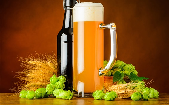 Обои Бутылка, хмель, пиво, кружка