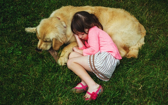 Wallpaper Cute child girl and dog sleeping on grass