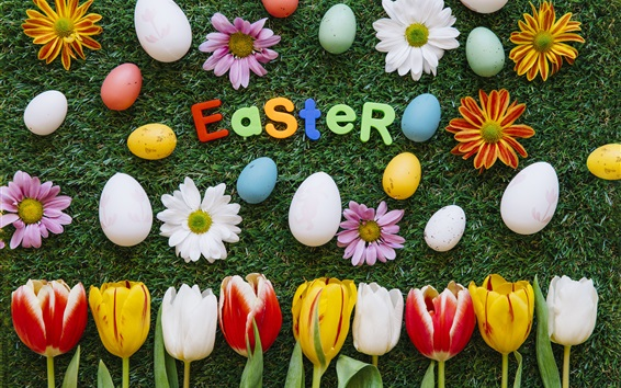 Wallpaper Easter, flowers, tulips, daisy, grass, eggs, colorful
