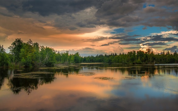 Wallpaper Lake, forest, clouds, sunset