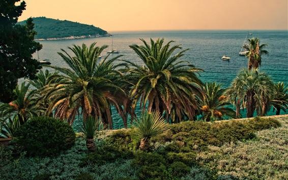 壁紙 ヤシの木、海、ボート、クロアチア