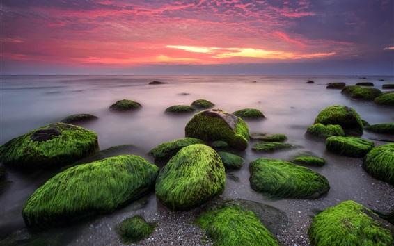 壁紙 海、石、苔、雲、日没