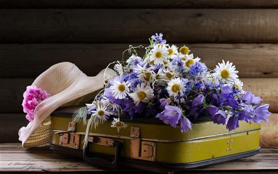 Fondos de pantalla Maleta, flores de manzanilla, sombrero