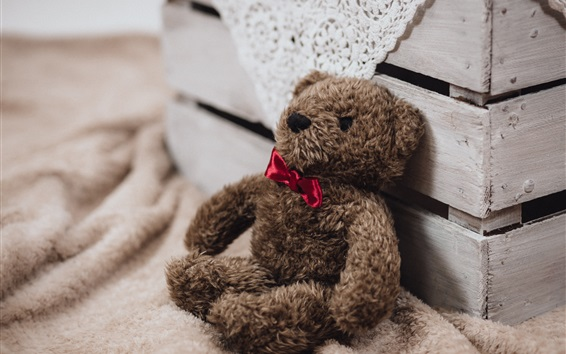 Wallpaper Teddy bear toy, gift