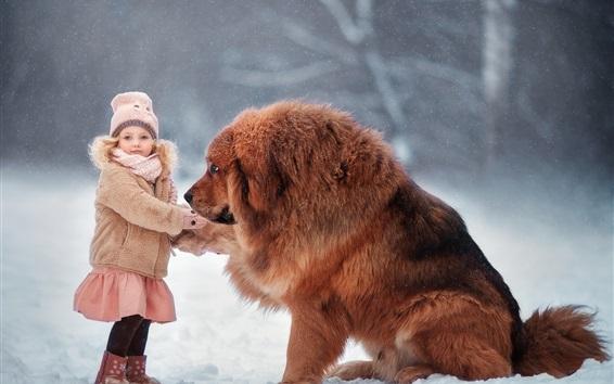 Fond d'écran Mastiff tibétain, chien, enfant fille, neige, hiver