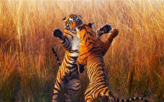 Обои Два тигра, детеныши, игривые
