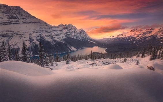 Wallpaper Winter, snow, mountain top, lake, trees, dusk