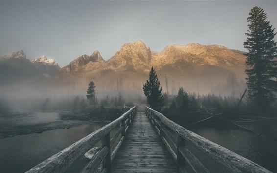 Wallpaper Wood bridge, mountains, river, fog, morning