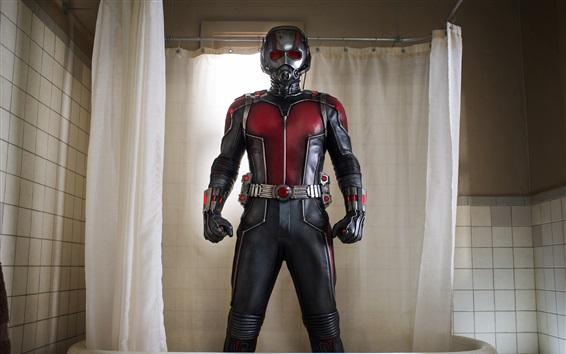 Wallpaper Ant-Man in bathroom
