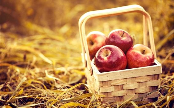 Fond d'écran Panier, pommes rouges, fruits