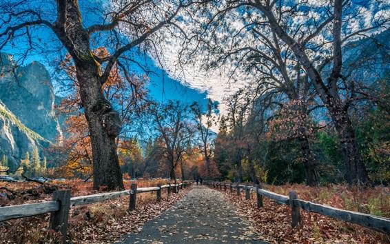 Обои Красивый парк, забор, деревья, горы, осень