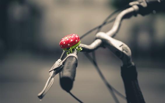 Wallpaper Bicycle, rain