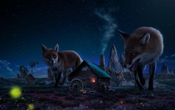 Papéis de Parede Big raposas e pequena casa, imagens de arte