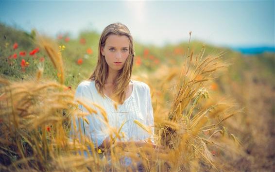Wallpaper Blonde girl, wheat, summer